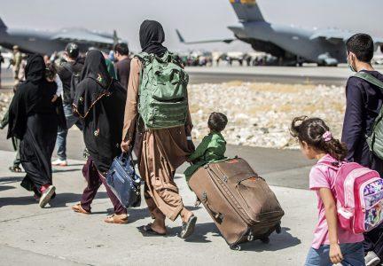 AP 21244717097148 hm afghan
