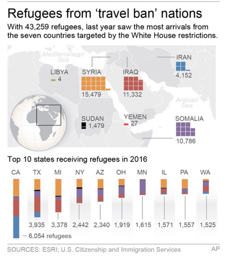 Refugees Graphic